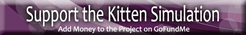 kitten simulation gofundme